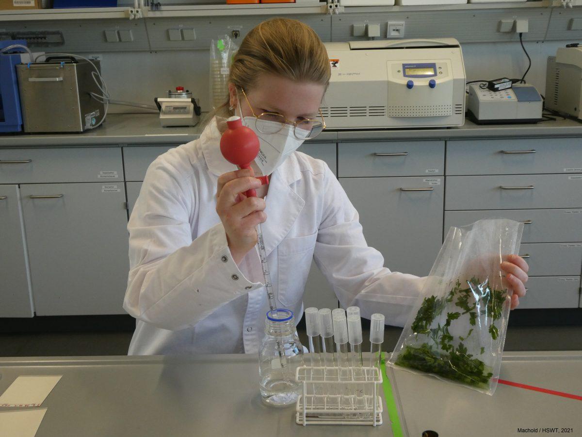 Mikrobiologie Praktikum